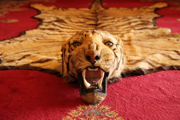 A tiger rug really sets the mood.